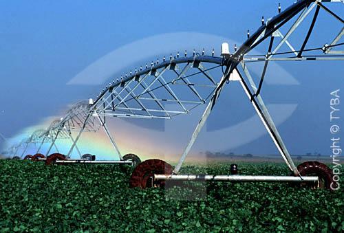 Assunto: Pivô de Irrigação em plantação de feijão / Local: Guaíra - SP - Brasil / Data: 1994