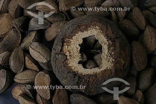Fruta - Castanha-do-Pará exposto no Mercado Ver-O-Peso - Belém - Pará - Brasil - 2004  - Belém - Pará - Brasil