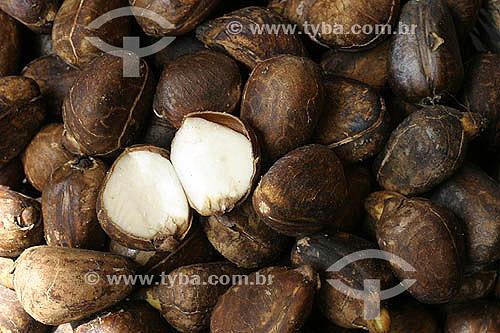 (Artocarpus incisa) - Fruta-pão exposta no Mercado Ver-O-Peso - Belém - Pará - Brasil - 2004  - Belém - Pará - Brasil