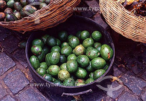 Abacates - Brasil