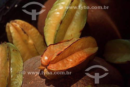 Carambola - Fruta da região nordeste - BA - Brasil  - Bahia - Brasil