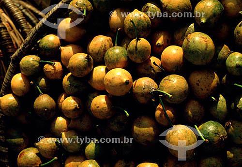 Bacuri pari - AM - Brasil  - Amazonas - Brasil