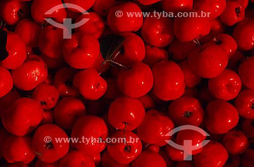 Acerola - Fruta da região norte - Brasil