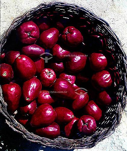 Fruta - Cesta com Jambos