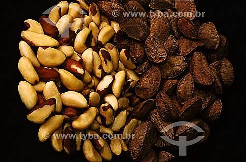 Castanha da amazônia (Bertholletia excelsa), fruto do Castanheiro