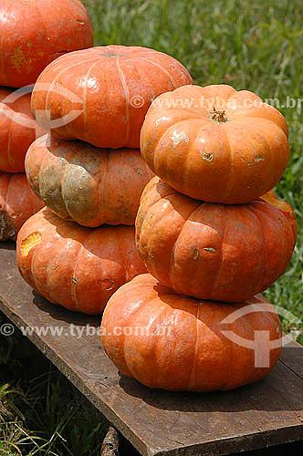 Agricultura - Legumes - Abóboras  empilhadas