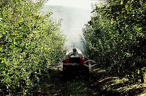 Fertilização em plantação de maçã, homem trabalhando com máquina - Fraiburgo - SC - Brasil / Data: 2008