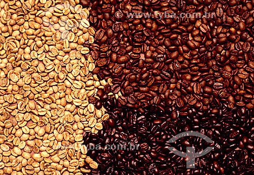 Detalhe de três tipos de grãos de café: natural e dois estágios de torrefação.