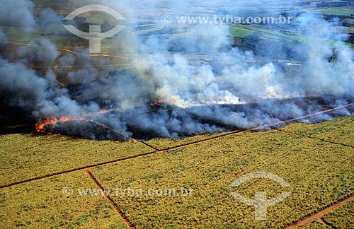 Agricultura - Queimada de cana-de-açúcar entre Bauru e Campinas - São Paulo - Brasil  - São Paulo - São Paulo - Brasil