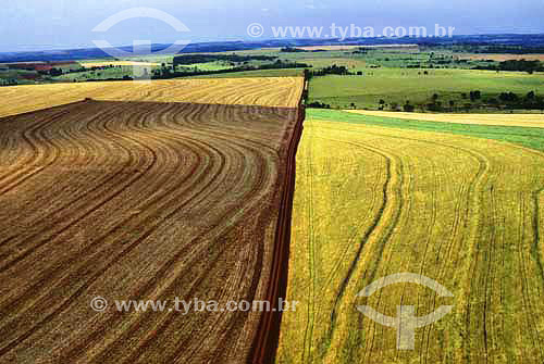 Agricultura em