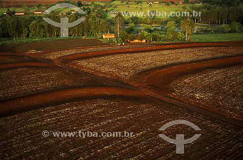 Assunto: Agricultura em  terras roxas considerada uma das mais férteis do Brasil / Local: Foz do Iguaçu - Paraná (PR) - Brasil / Data: 2001