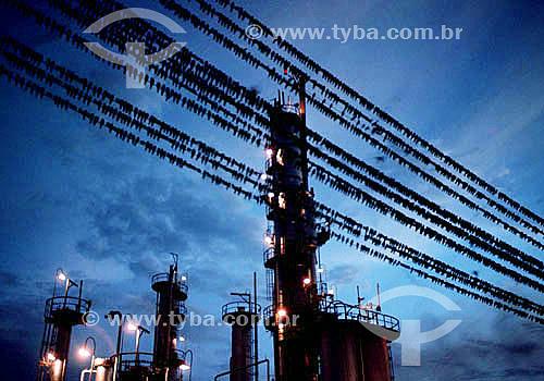 Conjunto de pássaros sobre fio elétrico com indústria ao fundo formando desenho gráfico - Brasil