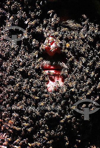 Homem no apiário com o rosto coberto por abelhas