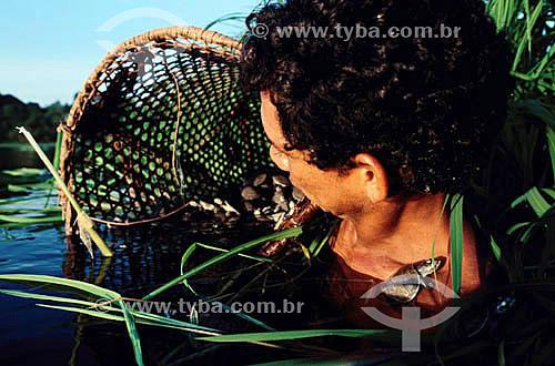 Assunto: Homem devolvendo tartarugas da Amazônia (Podocnemis expansa) da cesta para o rio - Projeto Quelônios da Amazônia / Local: Pará (PA) - Brasil / Data: Década de 90