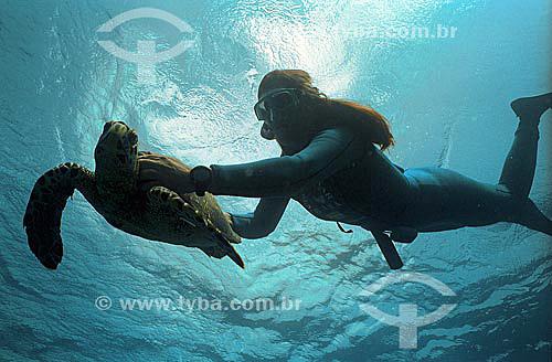 Mergulhadora com tartaruga - Projeto TAMAR - Brasil - junho/2004 Programa Brasileiro de Conservação das Tartarugas Marinhas, coordenado pelo IBAMA.