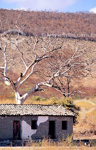 Casa modesta em área seca - Vale do Jequitinhonha - MG - Brasil / Data: 2008
