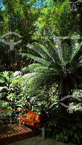 Jardins no Instituto Moreira Salles - Gávea - Rio de Janeiro - RJ - Dezembro de 2007  - Rio de Janeiro - Rio de Janeiro - Brasil