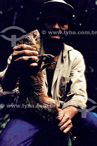Ambiental - Homem resgatando animais na inundação da construção da Hidrelétrica Balbina - AM - Brasil  - Presidente Figueiredo - Amazonas - Brasil