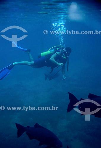 Mergulhador e peixes no fundo do mar