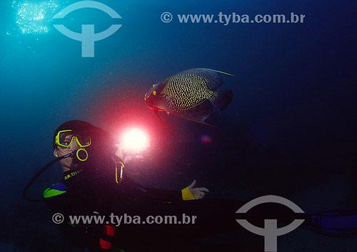Mergulhadora e Peixe Frade (Pomacanthus paru) - Abrólhos - BA - Brasil - 2007  - Caravelas - Bahia - Brasil