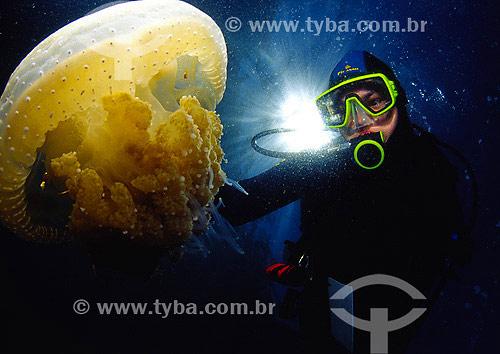 Mergulhadora com água-viva no fundo do mar - Arraial do Cabo - RJ - Brasil - 2007  - Cabo Frio - Rio de Janeiro - Brasil