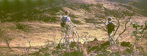 Ciclismo - dois homens em bicicletas