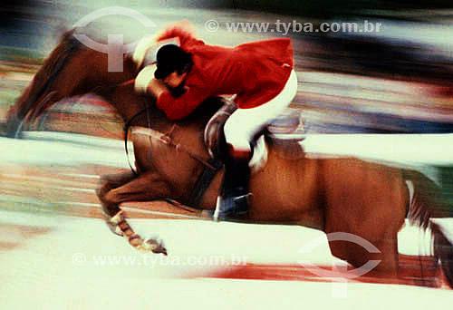 Equitação: Cavaleiro e cavalo praticando salto