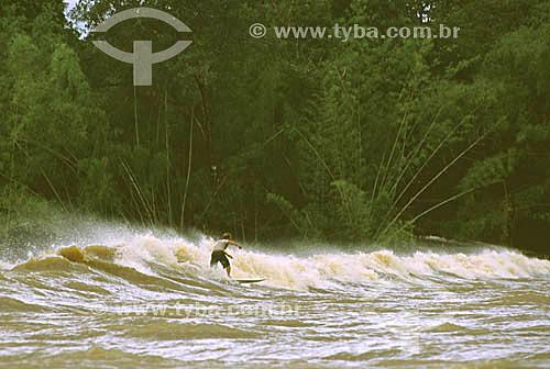 Surfista Sérgio Roberto surfando a pororoca do Rio Araguari - Amapá - Brasil - abril de 2001  - Amapá - Brasil