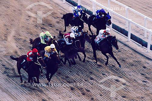 Esporte - Corrida de cavalos -Turfe - Apostas