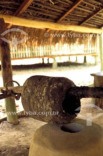 (Hevea brasiliensis) Borracha - Parque Ambiental Chico Mendes - Rio Branco - Acre - Brasil  - Rio Branco - Acre - Brasil