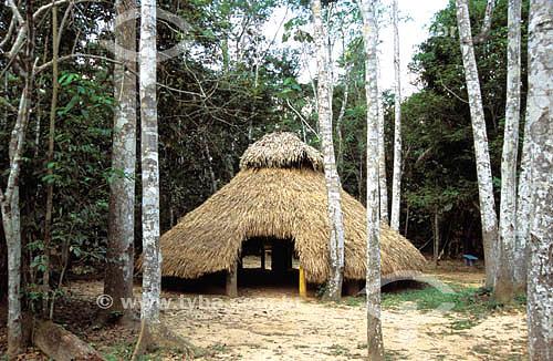 Oca de Iricurí (palha) - Parque Ambiental Chico Mendes - Rio Branco - Acre - Brasil  - Rio Branco - Acre - Brasil