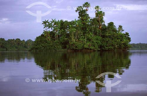 Ilha no rio Oiapoque - AP - Brasil - 2001  - Amapá - Brasil