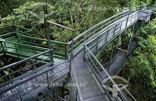 Turismo - ponte de madeira em várias direções - Amazônia - Brasil