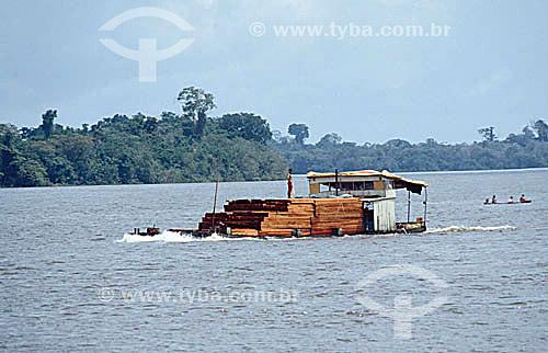 Balsa - Transporte hidroviário de madeira -  Rio Madeira - RO - Amazônia - Brasil  - Rondônia - Brasil