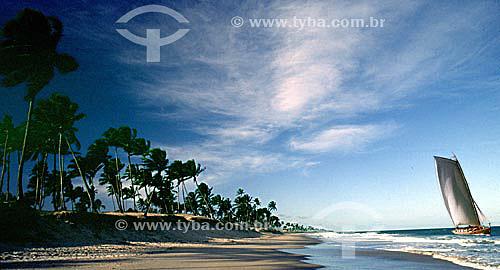 Praia de Itapoa com coqueiros e saveiro - Salvador - Bahia - Brasil  - Salvador - Bahia - Brasil