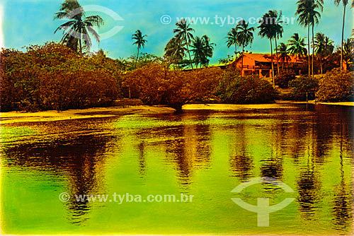 Casa à beira-mar com reflexo dourado e coqueiros - Praia do Forte - Mata de São João - Linha Verde - Costa dos Coqueiros - norte da Bahia - Brasil  - Porto Seguro - Bahia - Brasil