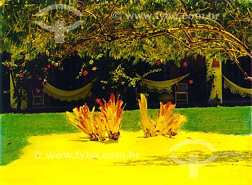 Jardim e redes em casa  - Mata de São João - Linha Verde - Costa dos Coqueiros - norte da Bahia - Brasil  - Porto Seguro - Bahia - Brasil