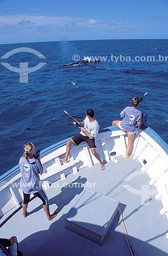 Barco com pesquisadores do Projeto Baleia Jubarte e uma baleia em frente - Abrolhos  - Caravelas - Bahia - Brasil