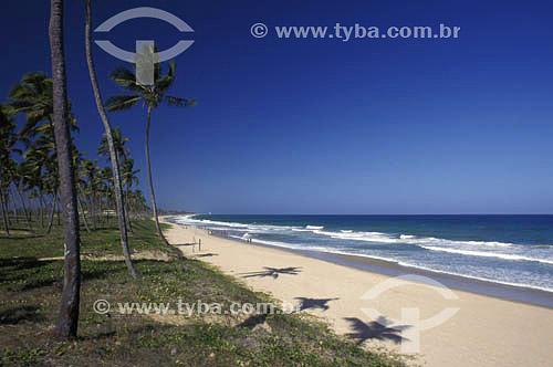Praia de Arembepe - litoral sul da Bahia - Brasil  - Camaçari - Bahia - Brasil