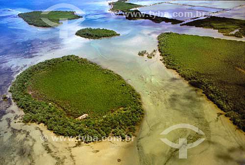 Vista aérea de mangue em Morro do São Paulo - Bahia - Brasil  - Cairu - Bahia - Brasil