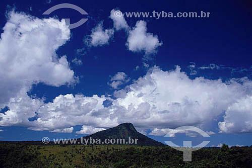 Vista do Monte Pascoal - Parque Nacional do Monte Pascoal  - sul da Bahia - Brasil  (2006)  A área denominada Costa do Descobrimento (Reserva da Mata Atlântica) é Patrimônio Mundial pela UNESCO desde 01-12-1999, abrangendo 08 áreas de 08 áreas de reservas naturais (entre elas o Parque Nacional Monte Pascoal), localizadas ao sul da Bahia e norte do Espírito Santo.  - Porto Seguro - Bahia - Brasil