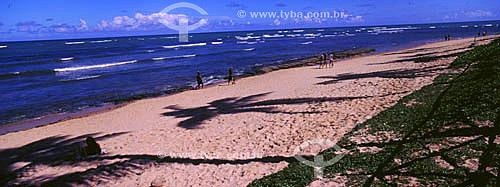 Sombra de coqueiros sobre a areia na Praia do Forte - Barra de São João - Linha Verde - Costa dos Coqueiros - norte da Bahia - Brasil  - Mata de São João - Bahia - Brasil