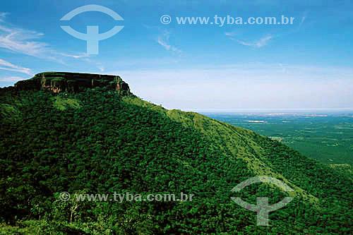 Parque Nacional da Chapada dos Guimarães - MT - Brasil  - Chapada dos Guimarães - Mato Grosso - Brasil