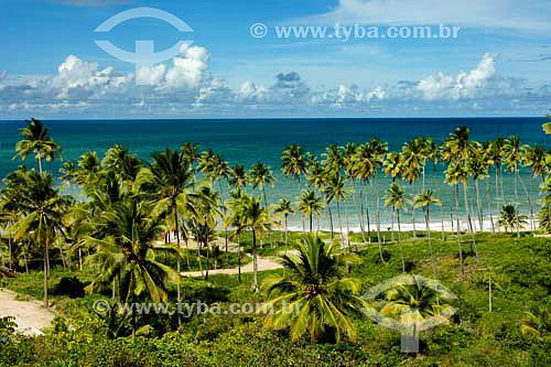 Praia do Coqueirinho - Jacumã - PB - Brasil  - Conde - Paraíba - Brasil