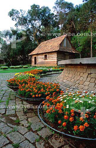 Bosque do Papa - Curitiba - Paraná - Brasil - Agosto de 2001  - Curitiba - Paraná - Brasil