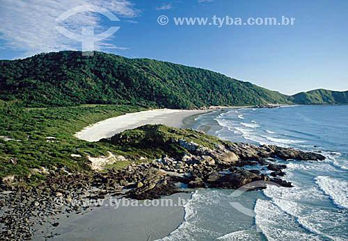 Praia de Fora - Ilha do Mel  - PR - Brasil / Data: 2001  O trecho da Mata Atlântica que inicia-se na Serra da Juréia, em Iguape/SP e vai até à Ilha do Mel, em Paranaguá/PR é Patrimônio Mundial Natural da UNESCO desde 1999.