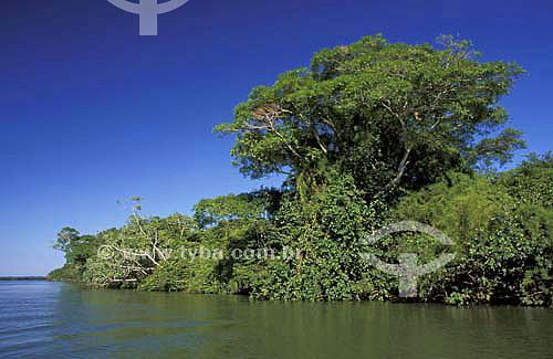 Ilha Capivara - Parque Nacional de Ilha Grande - Paraná - Brasil - Abril de 2004  - Paraná - Brasil