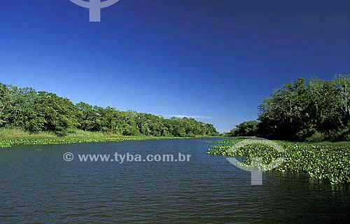 Lagoa Saraiva - Parque Nacional de Ilha Grande - Paraná - Brasil - Abril de 2004  - Paraná - Brasil