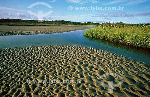 Superagui - Rio da Lagoa - PR - Brasil  - Guaraqueçaba - Paraná - Brasil