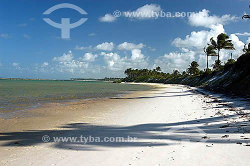 Praia em Muro Alto - Litoral de Pernambuco - Brasil  - Ipojuca - Pernambuco - Brasil